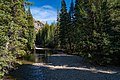 Roaring Fork River (Grottos Day Use Area) on Independence Pass, Colorado (30624681277).jpg