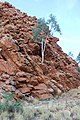 Rock formation at the Gap, Alice Springs IMG 2540 05.jpg