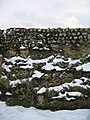 Roman Wall detail - geograph.org.uk - 1340622.jpg