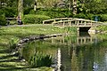 Roseaux près du pont rustique (27959287332).jpg