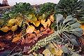 Rosenkohl Brassica oleracea.jpg