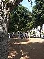 Rotschild Boulevards03.JPG