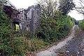 Ruin and lane near Lough Dhoo - geograph.org.uk - 578046.jpg