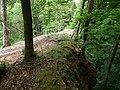 Ruine Greifenfels Norden.jpg
