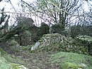Ruins on the south side of Foel Dyrch - geograph.org.uk - 1026506.jpg