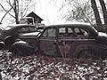Rust Palmersville5.jpg