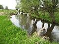Rzeka Kostrzyń.jpg
