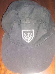 SADF 63 Mech field cap