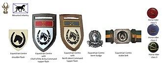 12 South African Infantry Battalion - SADF era Equestrian Centre insignia