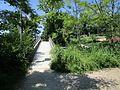 SENTIER DE LA VENOGE- pont.jpg