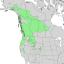 Salix scouleriana range map 2.png