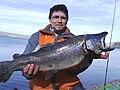 Salmon del pacifico.jpg