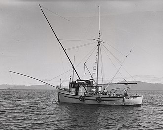 Trolling (fishing) - Salmon troller 1955