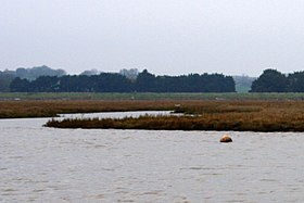 Salt marsh and sky, the Hamford Water National Nature Reserve - panoramio (4).jpg