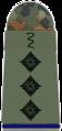 SanH 231-Stabsveterinär.png