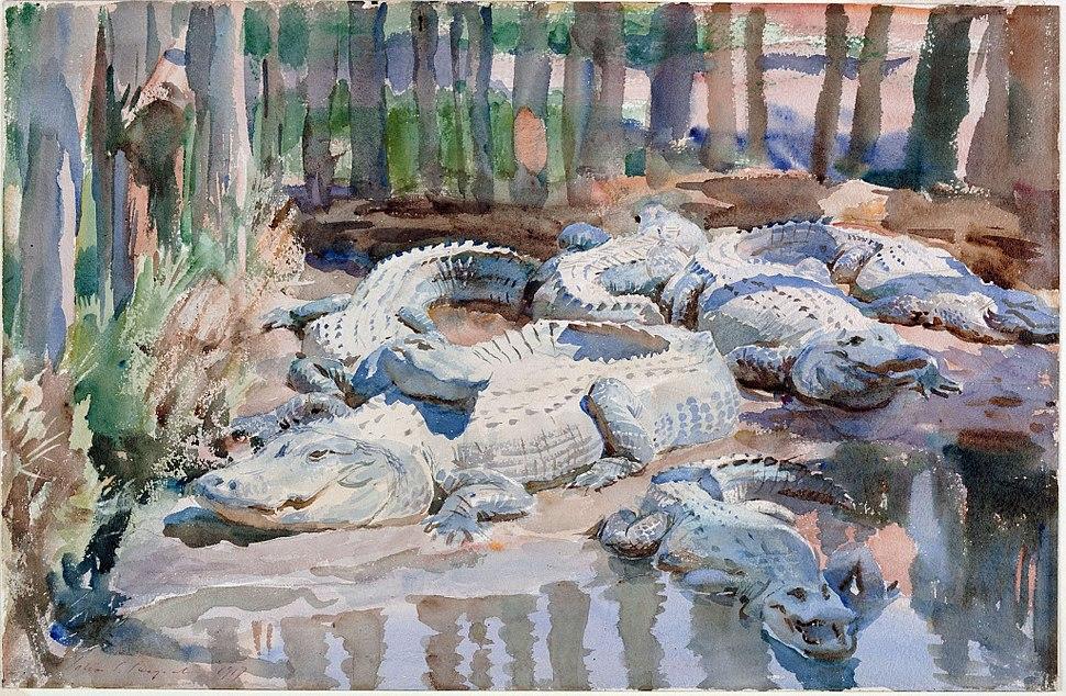 Sargent - Muddy Alligators