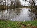 Semi-frozen pond, Frogmore - geograph.org.uk - 1116398.jpg