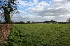 Sheep pasture near Egerton Green - geograph.org.uk - 712390.jpg