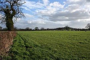 Egerton, Cheshire - Image: Sheep pasture near Egerton Green geograph.org.uk 712390