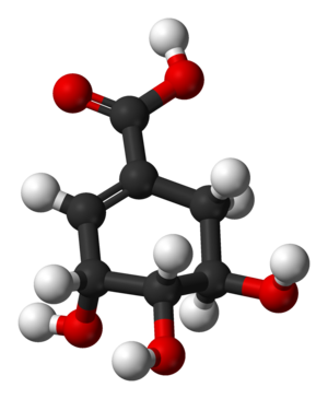 3D model of shikimic acid