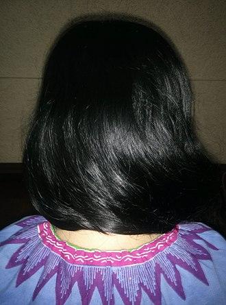 Black hair - Image: Shiny black hair