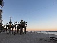 Shlomo Lahat Promenade, Tel Aviv - 2018-11-02 - IMG 1854.jpg