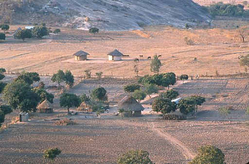 Shona farms Zimbabwe