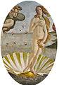 Silberne Venusmuschel.jpg