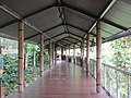 Singapore Zoo river safari boardwalk.jpg