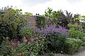Sissinghurst Gardens 9 (4907349737).jpg