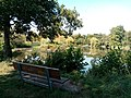 Sitzbank am Teich auf dem südlichen Ufer.jpg