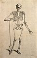 Skeleton leaning on an inscribed tombstone, resting his righ Wellcome V0008021ER.jpg