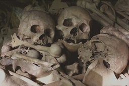 Skulls on the Latea Caves, January 2015.png