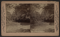 Sleepy Hollow, Tarrytown, N.Y, from Robert N. Dennis collection of stereoscopic views.png
