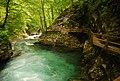 Slovenia (11663515625).jpg