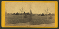 Smithsonian Institute Grounds. Capitol in the distance, by E. & H.T. Anthony (Firm).png