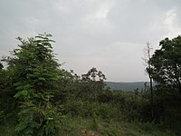 Snap from Bannerghatta National Park Bangalore 8528.JPG