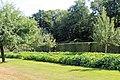 Sofiero (Helsingborg), garden, apple trees, cut hedge and tropaeolum.jpg