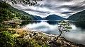 Sognefjord - Dragsviki, Norway - Travel photography (22645573369).jpg