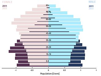 South India - Population Pyramid in South India