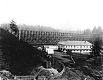 Spruce camp next to railroad trestle, near Newport, Oregon (3230072808).jpg