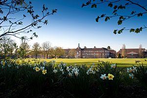 St Swithun's School, Winchester - St Swithun's School grounds