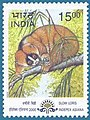 Stamp of India - 2000 - Colnect 161116 - Greater Slow Loris Nycticebus coucang.jpeg