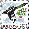 Stamps of Moldova, 2010-18.jpg