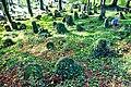 Stary cmentarz żydowski w Cieszynie25.JPG