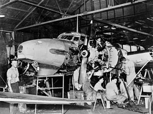Archerfield Airport - Aircraft mechanics working on an Avro Anson Mk1 aircraft at Archerfield, ca. 1942.
