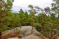 Stenkälleklack Tiveden.jpg