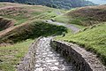 Steps down Herefordshire Beacon - geograph.org.uk - 1384847.jpg