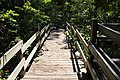 Steps down from amphitheater, General Coffee State Park.jpg