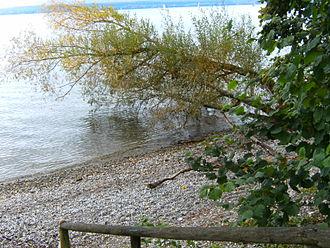 Stetten, Bodenseekreis - Natural beach of Lake Constance of the village of Stetten (Bodenseekreis) at the path from Meersburg to Hagnau